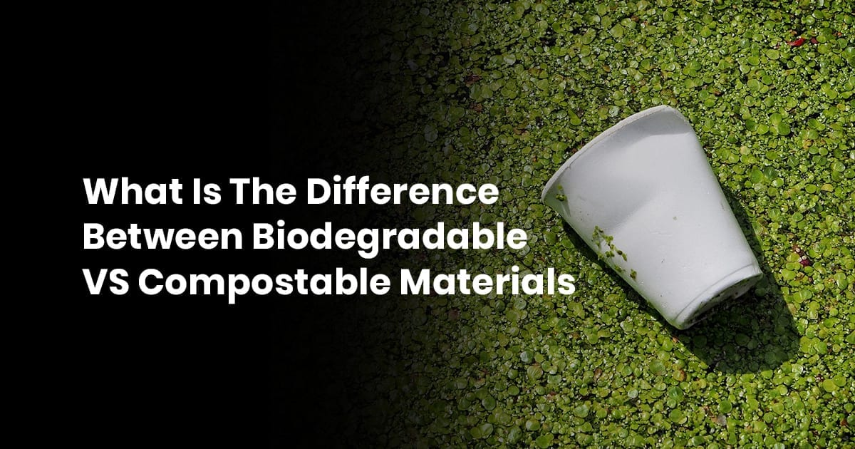 What Is The Difference Between Biodegradable Vs. Compostable Materials