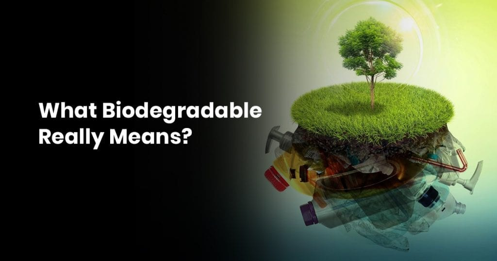 19 What Biodegradable Really Means