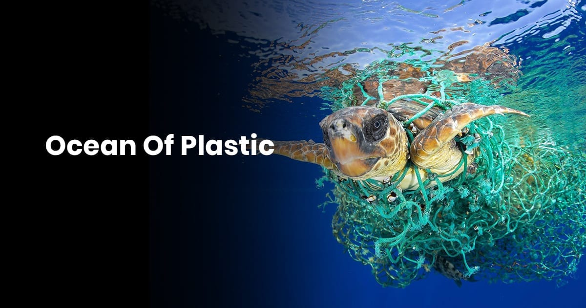 Ocean of Plastic