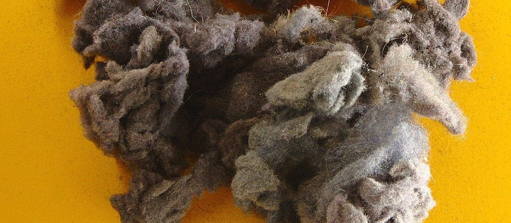 Dryer Lint Compost