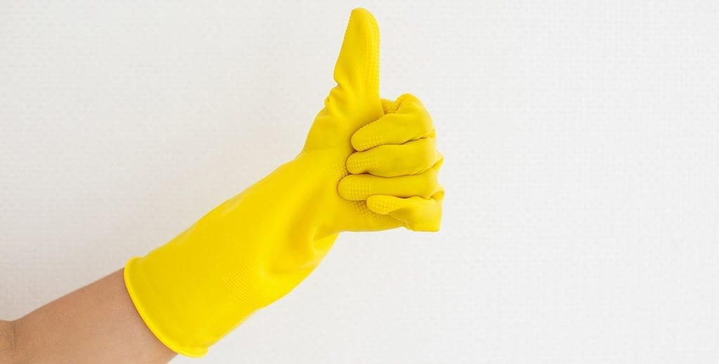 PVA Gloves