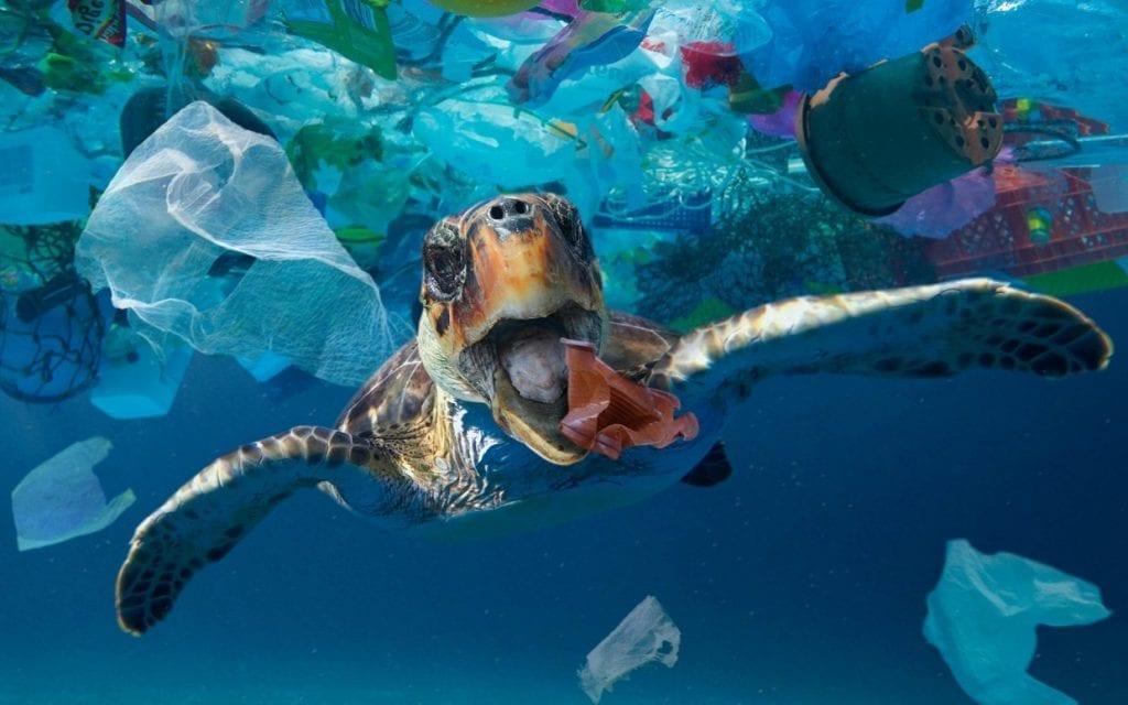 Turble Plastics Stuck with Plastics