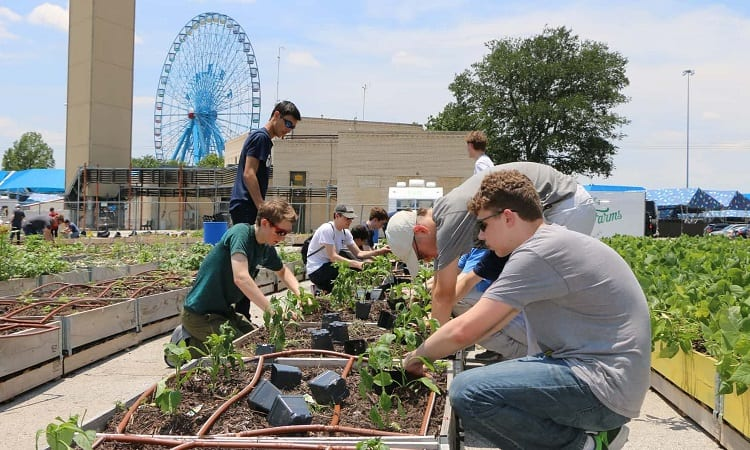 Group Of People Working On Urban Garden