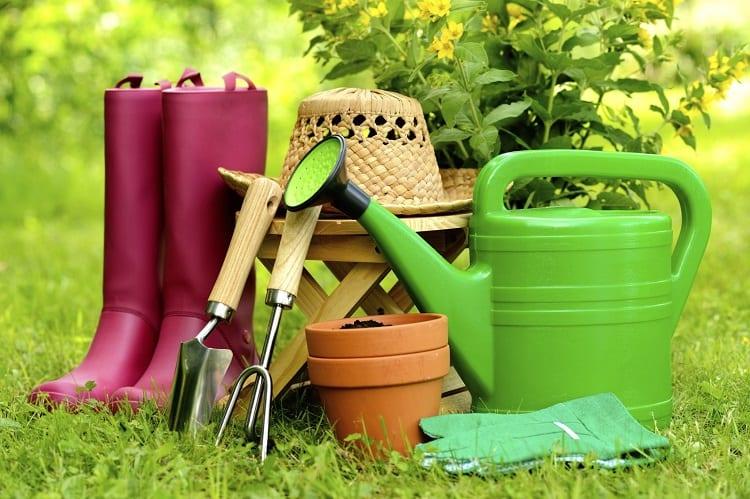 Urban Gardening Tools