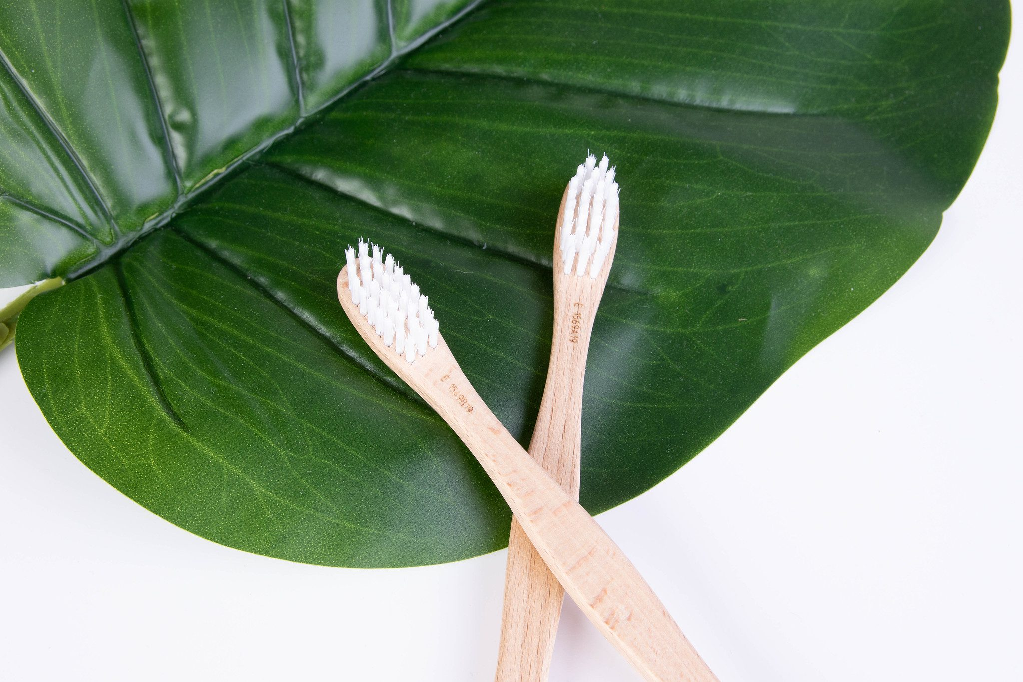 Bamboo Toothbrushes on a leaf